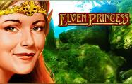 Виртуальный онлайн аппарат Elven Princess от Novomatic